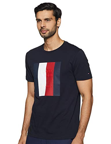 Tommy Hilfiger Men's Printed Regular fit T-Shirt (P1AMK170_Desert Sky S)