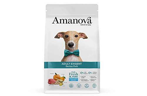 Amanova Cibo Secco per Cani Adulti di Taglia Media o Grande per palati esigenti Gusto Maiale - 100% Naturale, ipoallergenico e monoproteico - Grain Free - Cruelty Free - Formato da 2 kg