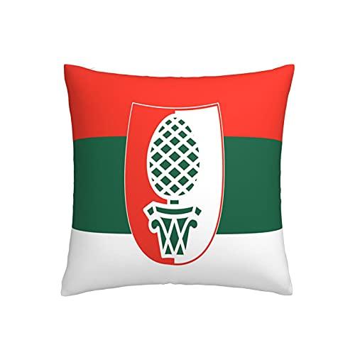 Flagge ansbach in der Mitte Kissenbezug, quadratisch, dekorativer Kissenbezug für Sofa, Couch, Zuhause, Schlafzimmer, Indoor Outdoor, niedlicher Kissenbezug 45,7 x 45,7 cm