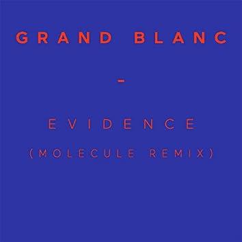 Evidence (Molecule Remix)