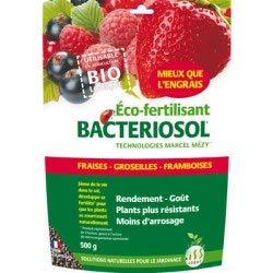 Bactériosol Fraises/Petits fruits (lot de 3 X 500g)