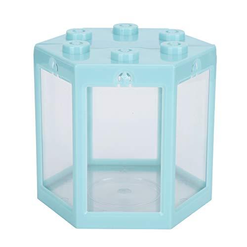 Evonecy Hex-Aquarium, Desktop-Aquarium Leichte, superresistente Hex-Form für Büro(Blue)