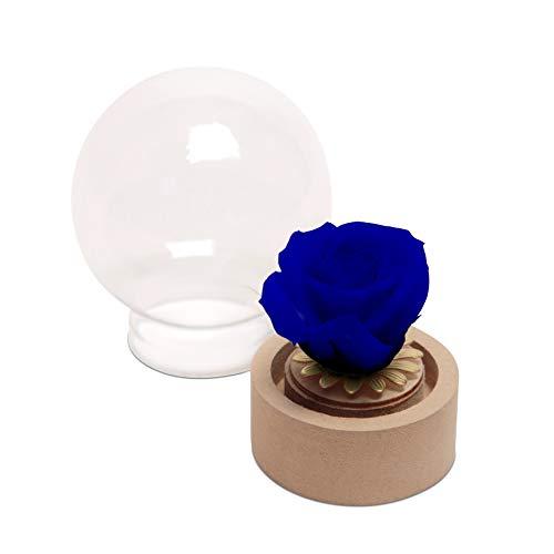 Kleine Rose im Glas ewige Blume Blau echte haltbare Rose mit Glaskuppel rund (Small, Blau)