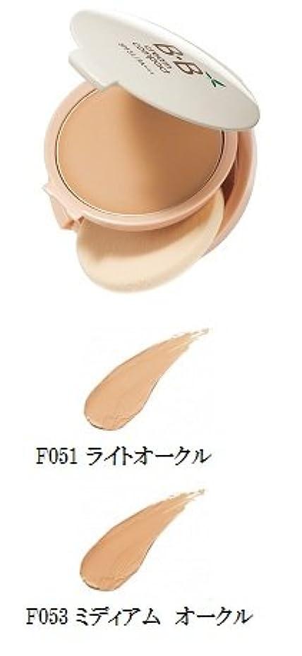 便益液体努力するエイボン(AVON) BB クリーム コンパクト 12g