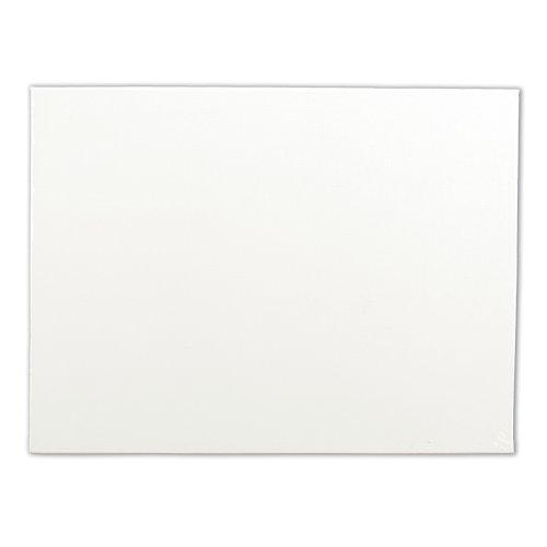 Winsor & Newton Tablero de Lienzo, Blanco, 16' x 20', 1