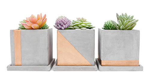 Set of 3 Concrete Planters with Copper Accent and Removable Concrete Tray. Modern Home Decor- Rectangular Planter Set for Succulents, Faux Succulents Cactus or Herbs