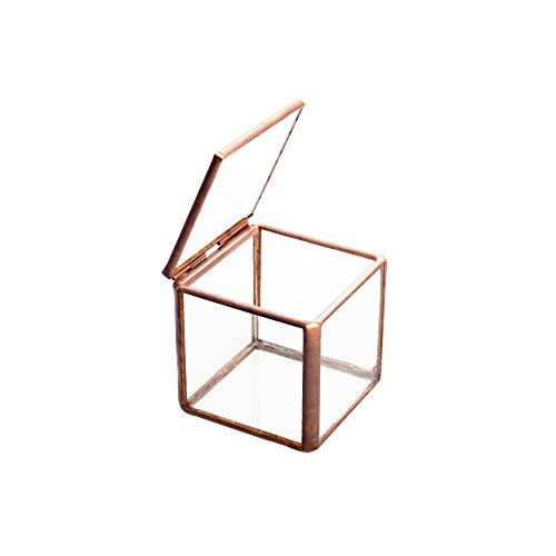 Feyarl Schmuckschatulle aus Glas, Glas Box Geometrisches Glas Terrarium Box mit Verzierungen für Ringe Ohrringe Aufbewahrung Blume (klein)