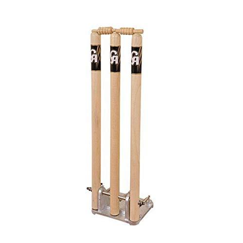 Ca Stump Return Wicket