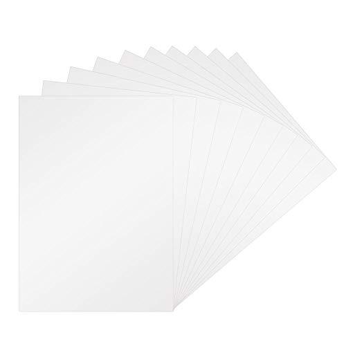 LYTIVAGEN 10PCS Película Termoencogible, A4 Láminas de Plásitico, Transparente Película para Artesanías,DIY,...