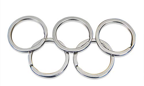 CaLeQi Flat Key Rings Metal Split Rings Keyrings Keychain Ring,1 inch/ 25 mm,Silve 100 Pieces for House Car Key Attachment (25mm)