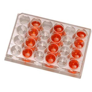 Cell Max 42% OFF Culture Plates Recommended 24 50 Case per Well