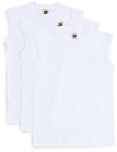 [グンゼ] インナーシャツ G.T.HAWKINS 綿100% サーフシャツ 3枚組 HK15183 メンズ ホワイト 日本L (日本サイズL相当)