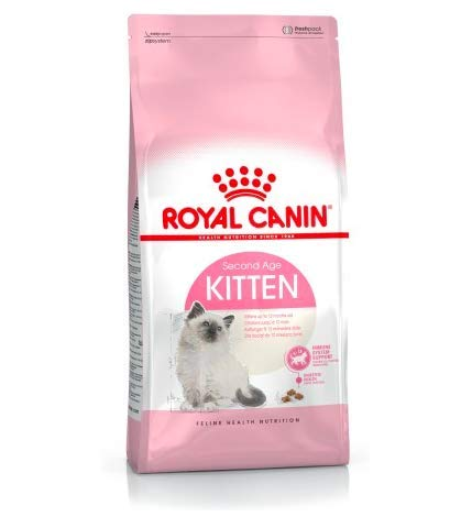 Maltbys' Stores 1904 Limited 2kg Royal Canin KITTEN Size Health Nutrition Cat Food