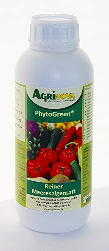 PhytoGreen®-Algensaft - 1 Liter - Natürlicher Algensaft als K-Dünger zur Kräftigung und Vitalisierung Ihrer Pflanzen