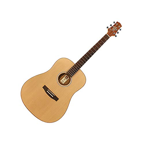 Ashton D20 NTM · Guitarra acústica