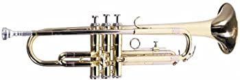 Best lauren trumpets Reviews