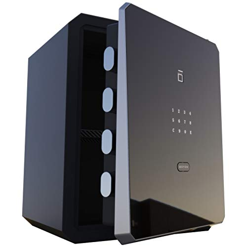 BOFON W-series 2.1Cubic feet Family Fingerprint Password Safe Box with Key,Pistol,Lock box,Case...