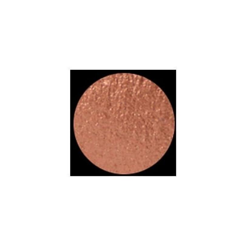 悔い改める卒業普通のKLEANCOLOR American Eyedol (Wet/Dry Baked Eyeshadow) - Terracotta (並行輸入品)