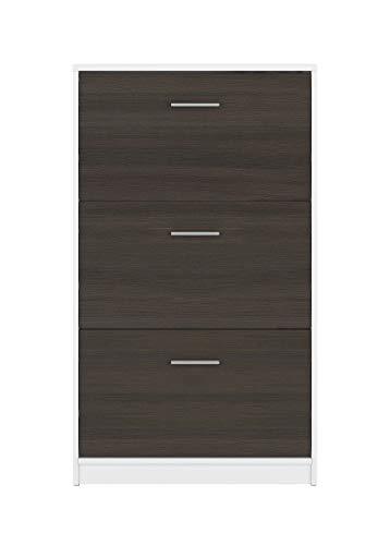 BOARDD - Zapatero para pasillo y zapatero con puerta abatible, color blanco y wengué, 70 x 120,5 x 17,5 cm