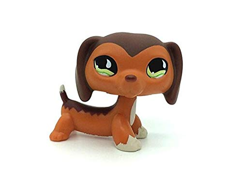 WOOMAX Littlest Pet Shop LPS Spielzeug Savvy Savannah Dachshund Hund Teardrop Eye Beste Geburtstagsgeschenk
