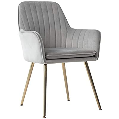 Five Stars Furniture Velvet Dining Chair,Accent Chair, Modern Leisure Armchair Living Room Chair,Home Desk Chair,Golden Metal Legs (Gray) Set of 1 - Ergonomically shaped Armchair and elegantly curved silhouette provides maximum comfort, it's a perfect decor for living room bedroom dining room or office. Soft velvet fabric surface, Durable golden legs with Anti-slip Footpad (stable and firm). Removeable seat cushion with soft sponge inside. - kitchen-dining-room-furniture, kitchen-dining-room, kitchen-dining-room-chairs - 31+nLhIVcsL. SS400  -