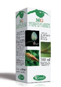 BETULLA LINFA Gemmoderivato - 100 ml diuretica e depurativa
