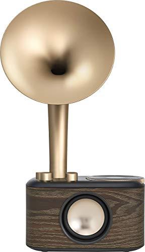 Oferta de WR-45X Gold (Euphonic 45X).