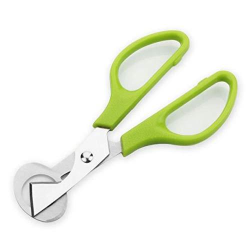 Cortador de huevos de codorniz para pájaros y palomas, herramienta para cortar huevos de codorniz, abrelatas, galleta, cuchilla de acero inoxidable, herramienta de cocina, cortadora verde, 1 paquete