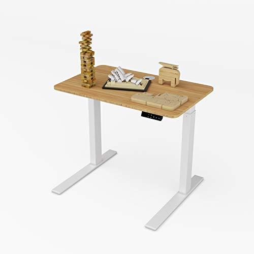 ZHU CHUANG Electric Height Adjustable Desk Standing Desk