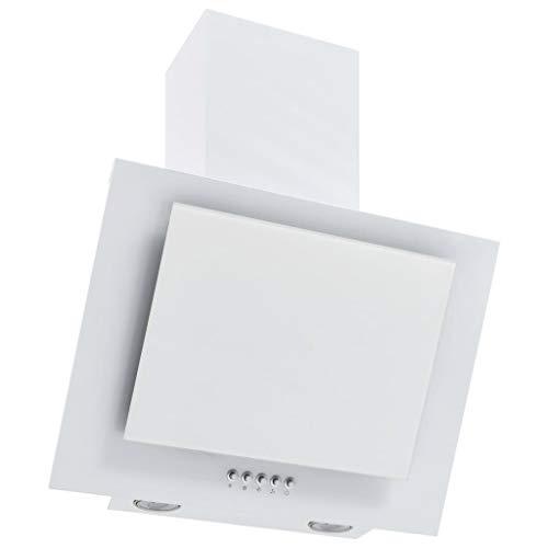 pedkit Campana Extractora RGB de LED Extractor de Cocina Campana de Pared Acero INOX. Vidrio Templado 60cm