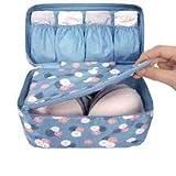 SWAMEY Bra 1 Pc Underwear Lingerie Travel Bag for Women Clothes Storage Organizer