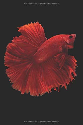 Aquarium Tagebuch: Planer, Notizbuch, Bestandsbuch, Futterplan für alle Auqarianer und Aquaristik Fans ♦ Logbuch für über 100 Einträge ♦ 6x9 Format ♦ Motiv: Roter Fisch