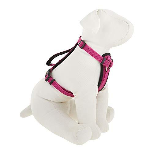 KONG Comfort Padded Chest Plate Dog Harness (Medium, Pink)