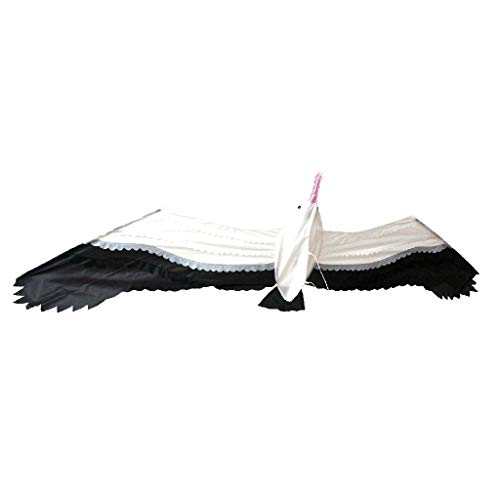 Rhombus 0911153 -  3D Jonas Möwe Kite, Drachen Flugspielzeug