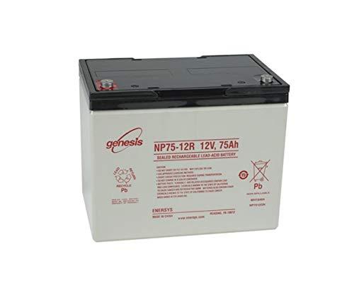 NP75-12R Batería Gel - ENERSYS - 12V 75Ah 20/h ⭐