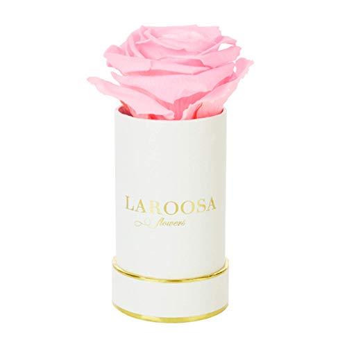 LAROOSA flowers Infinity Rosen Flowersbox Rosenbox mit echten & konservierten Blumen (3 Jahre haltbar) (Baby, Princess Rose)
