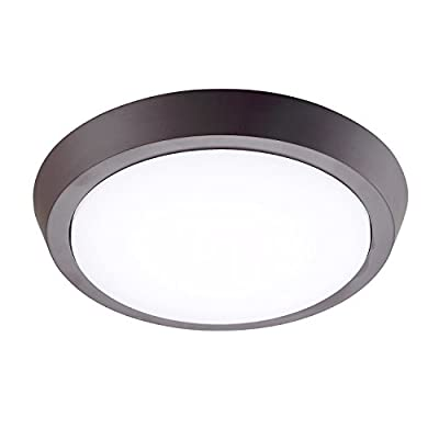 GetInLight Flush Mount LED Ceiling Light, 4000K