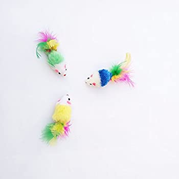 Namgiy 3X Jouet pour Chat Souris Interactive à mâcher Jouets à Herbe à Chat Cat Exercice cranté Bite Jouet pour Animal Domestique Fournitures Lovers 'Cadeau coloré 10cm