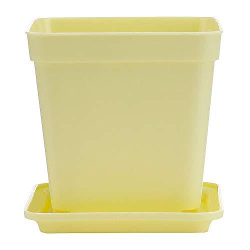 XHZJ Pot de Fleur charnu créatif carré en Plastique juteux Grand diamètre Pot de Pouce Petit carré Noir avec Plateau décoration de Bureau Pot de Fleur Blanc juteux (Color : Yellow)