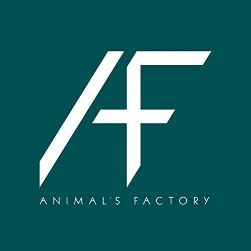 Animal's Factory, Flavio Calaon, Kyrhian Balmelli & Lorenzo Terzaghi