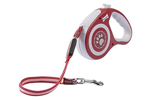 Zoofari - Cuerda de extensión LED con luz Intermitente, Reflectante, 3 m, para Perros de hasta 35 kg