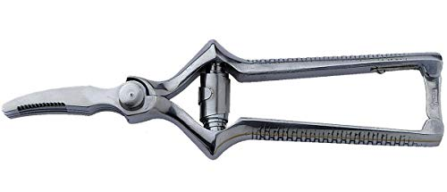 Masticateur, rostfrei, 18 cm