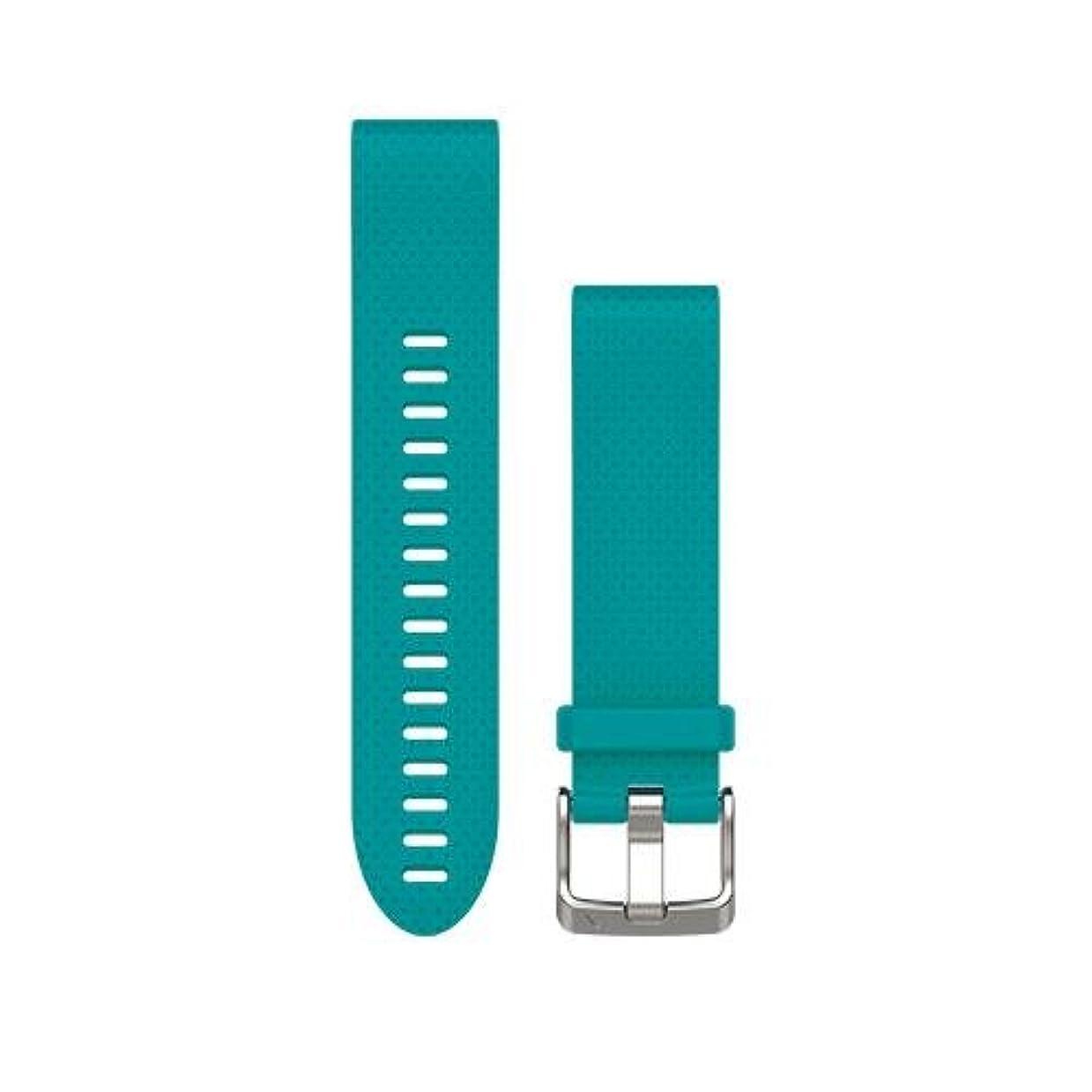変わる夜間ベリーGARMIN(ガーミン) ベルト交換キット fenix5s用 Blue 010-12491-25