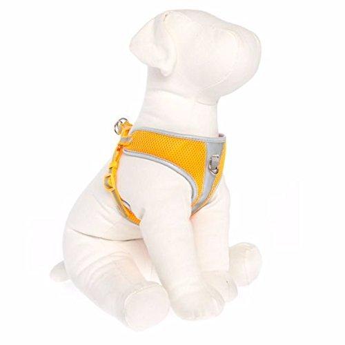 TOP PAW Reflective Comfort Dog Harness Orange Large