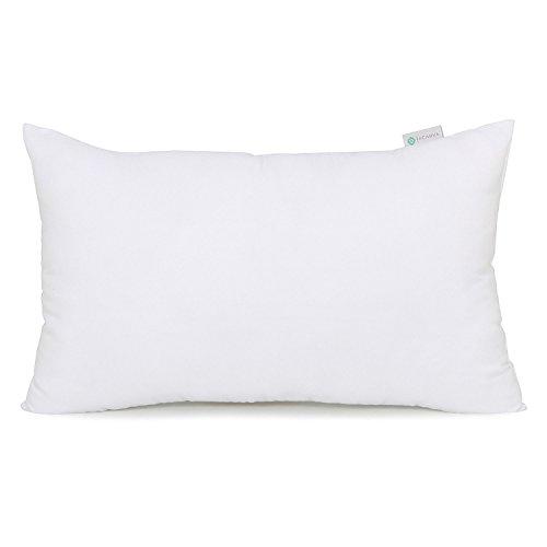 Acanva Hypoallergenic Throw Pillow Insert Soft Rectangle Decorative Form Stuffer Cushion Sham Filler, 16x26, White
