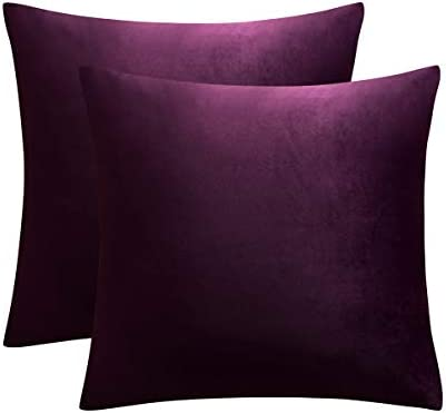 JUSPURBET Decorative Velvet Throw Pillows Covers for Couch Bed Sofa Pack of 2 Luxury Soft Cushion product image