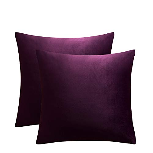 JUSPURBET Decorative Velvet Throw Pillow Covers for Sofa Couch Bed,Pack of 2 Luxury Soft Cushion Cases,16x16 Inches,Eggplant Purple