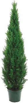 One 60 Inch Indoor Outdoor 5 Max 65% OFF Foot Artificial Pine Topiary Cedar Ranking integrated 1st place