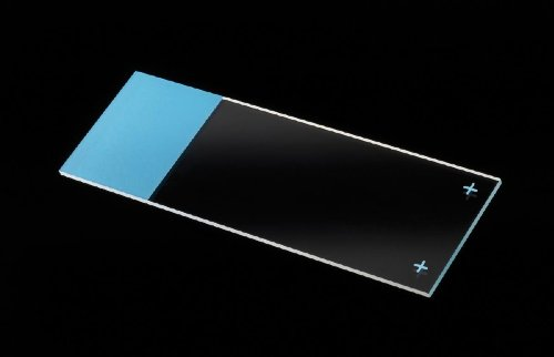 Positive Charged Frosted Microscope Slides ( SLIDE, MICRO, POS CHARGE, BLUE FROSTED ) 1440 Each / Case