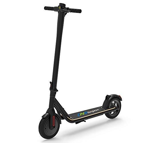 CNSturgeon Patinetes Eléctricos, Neumático Sólido de 8,5 Pulgadas E-Scooter Plegable con Pantalla LCD - Motor de 250W - Velocidad Máxima de 25 km/h - Batería de 7,5Ah App para Adultos (Negro)